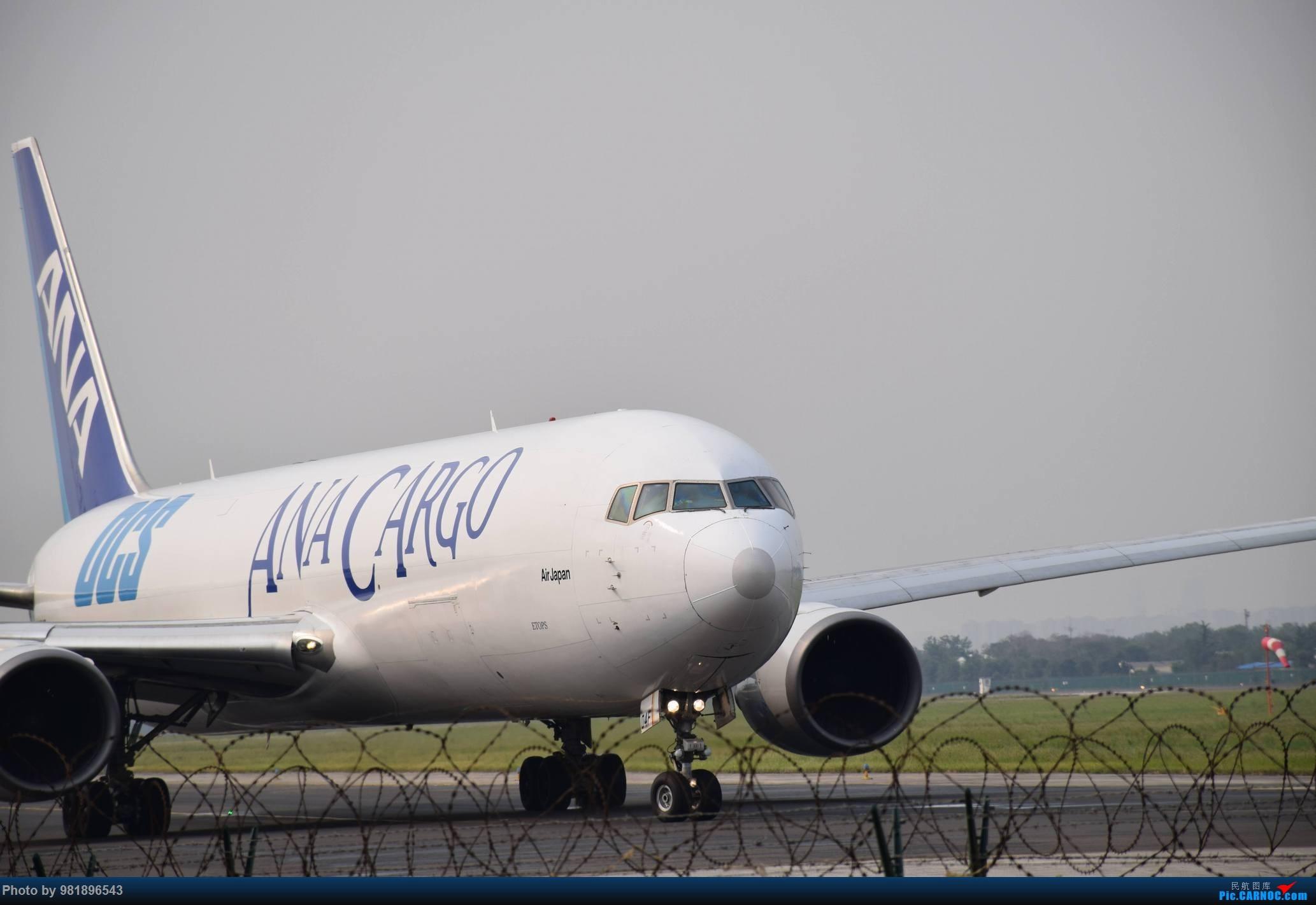 Re:[原创]【新人拍机】青岛周日的一天 BOEING 767-300 JA604F 中国青岛流亭国际机场