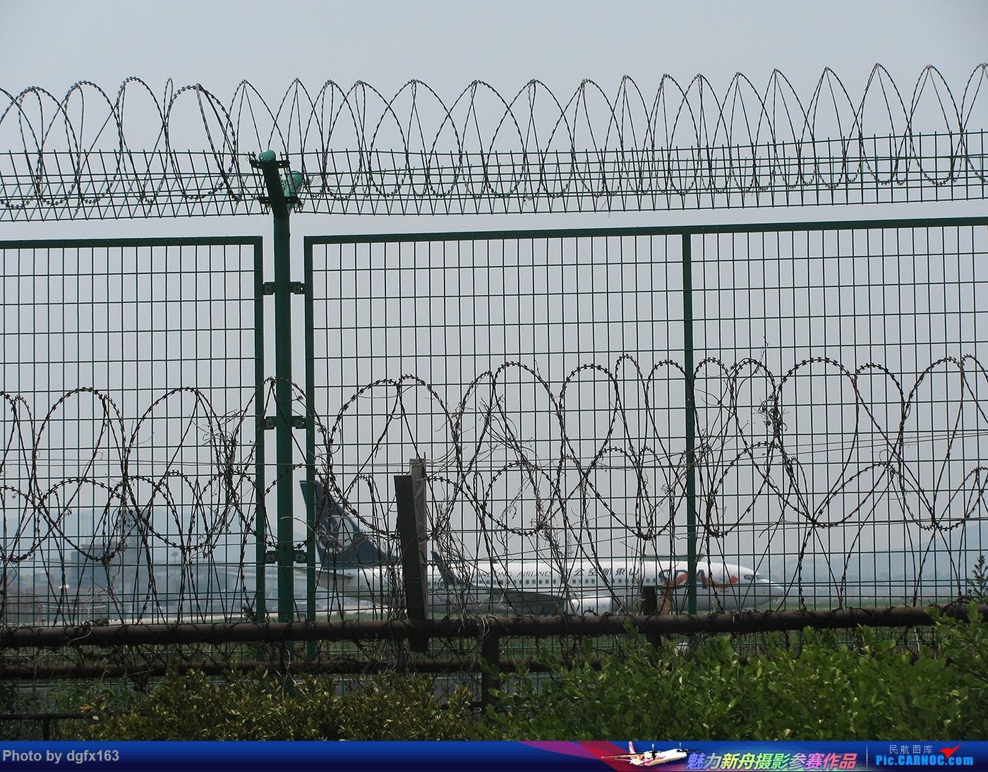 Re:[原创]【dgfx163的拍机(1)大连周水子DLC,烈日拍机1小时半。全日空、日本航空、大韩。。。还不错 BOEING 737-800  中国大连周水子国际机场