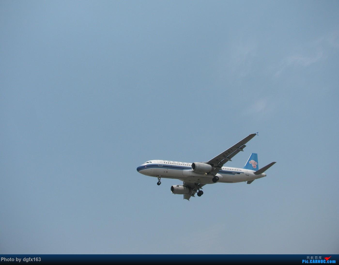 Re:[原创]【dgfx163的拍机(1)大连周水子DLC,烈日拍机1小时半。全日空、日本航空、大韩。。。还不错 AIRBUS A320-200 B-2367 中国大连周水子国际机场