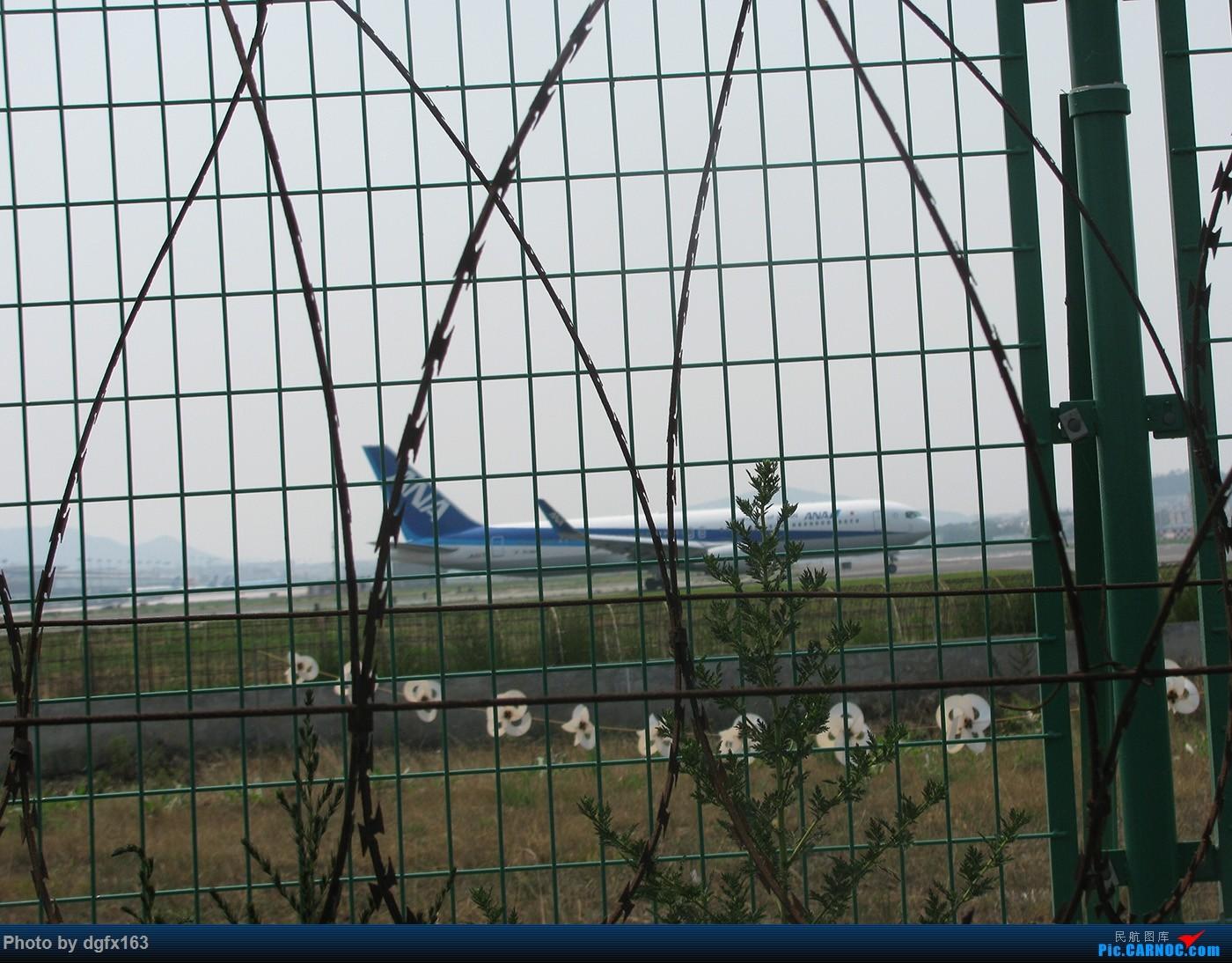 Re:[原创]【dgfx163的拍机(1)大连周水子DLC,烈日拍机1小时半。全日空、日本航空、大韩。。。还不错 BOEING 767-300ER JA627A 中国大连周水子国际机场