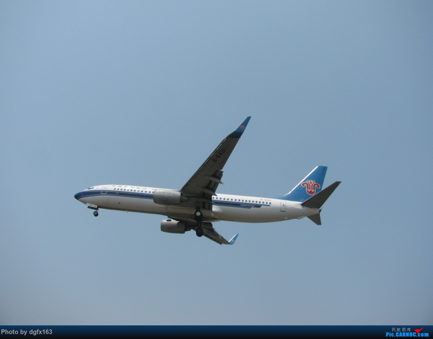 Re:[原创]【dgfx163的拍机(1)大连周水子DLC,烈日拍机1小时半。全日空、日本航空、大韩。。。还不错 BOEING 737-800 B-5421 中国大连周水子国际机场