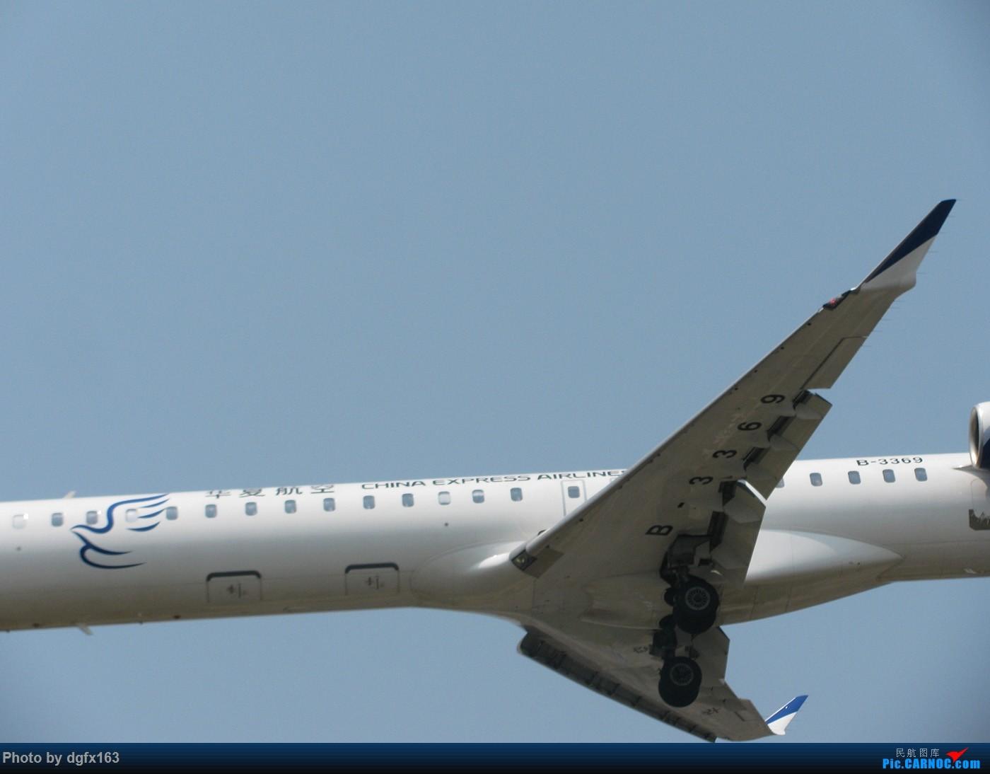 Re:[原创]【dgfx163的拍机(1)大连周水子DLC,烈日拍机1小时半。全日空、日本航空、大韩。。。还不错 BOMBARDIER CRJ900NG B-3369 中国大连周水子国际机场