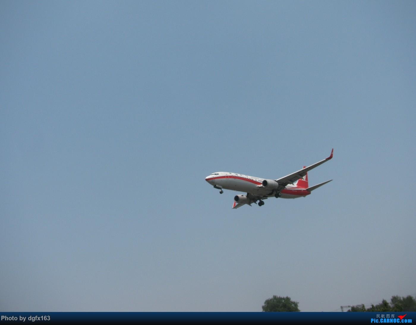 Re:[原创]【dgfx163的拍机(1)大连周水子DLC,烈日拍机1小时半。全日空、日本航空、大韩。。。还不错 BOEING 737-800 B-5077 中国大连周水子国际机场