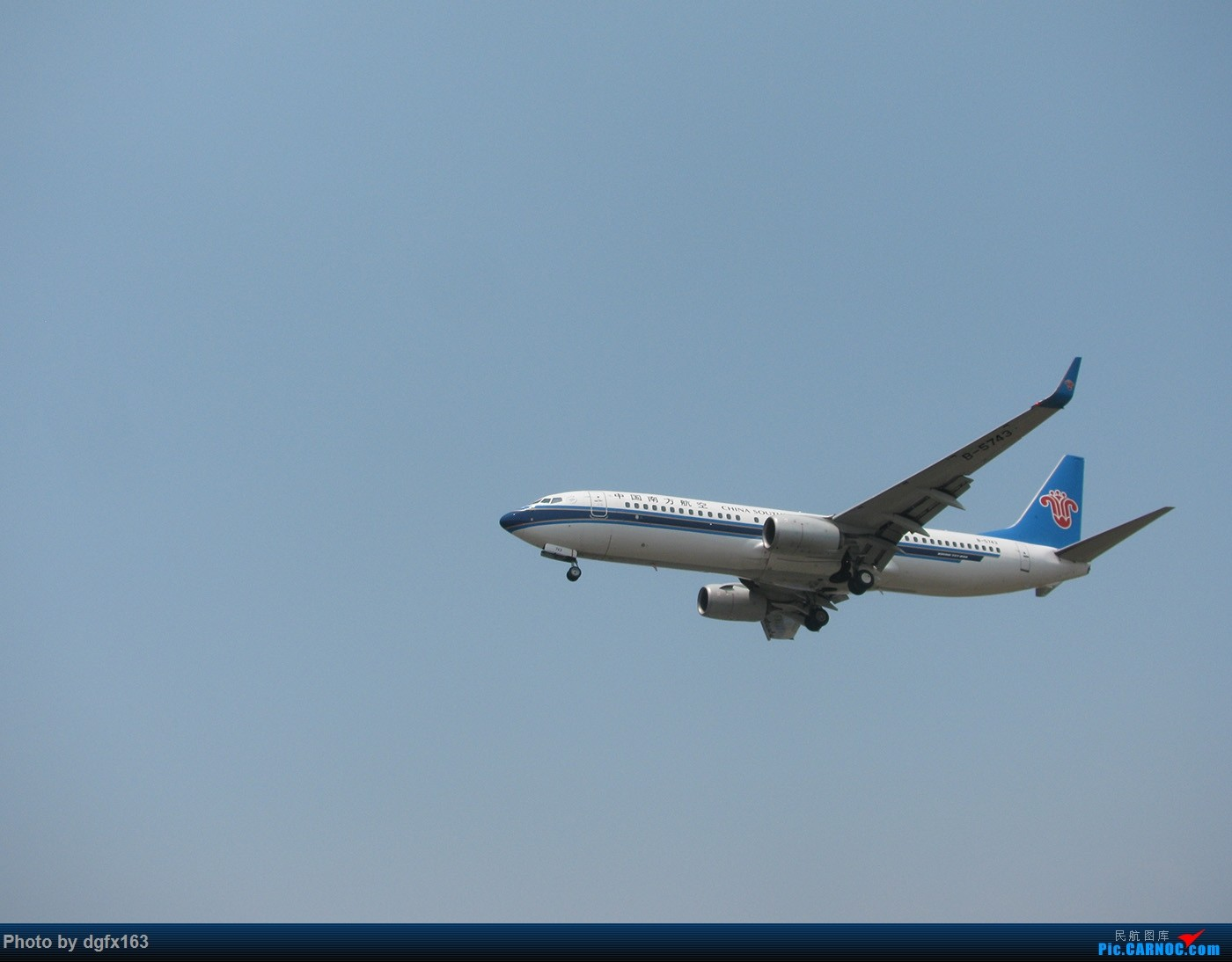 Re:[原创]【dgfx163的拍机(1)大连周水子DLC,烈日拍机1小时半。全日空、日本航空、大韩。。。还不错 BOEING 737-800 B-5743 中国大连周水子国际机场