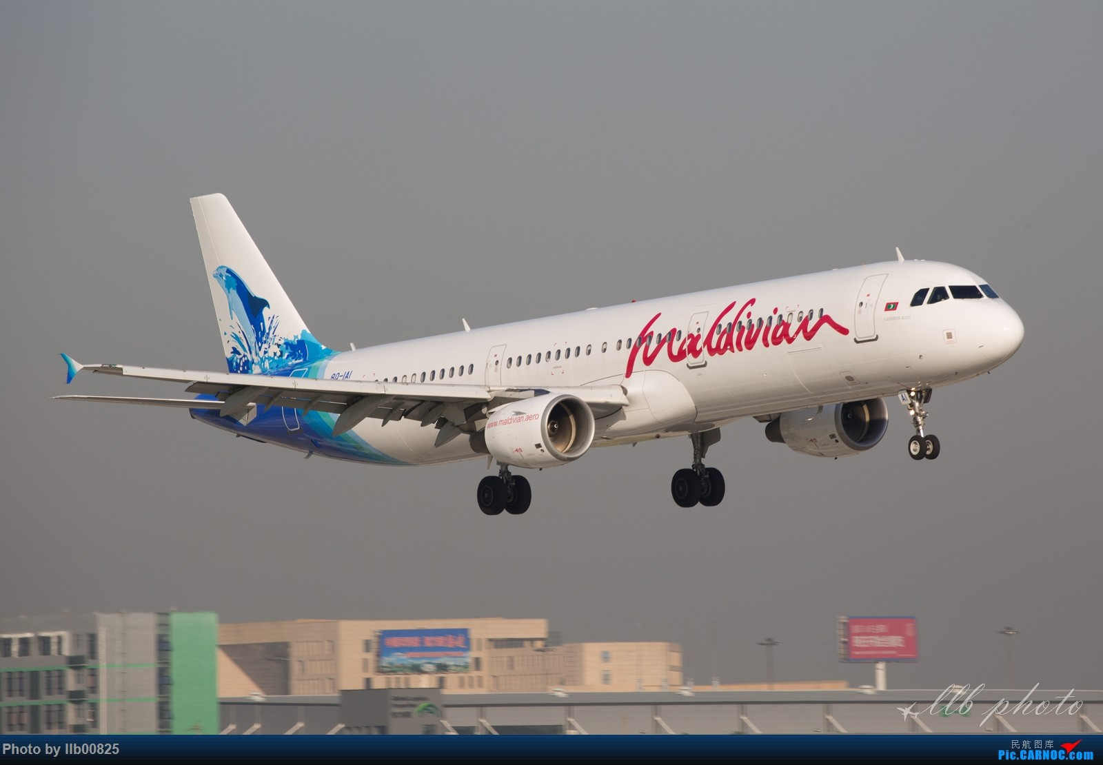 Re:[原创]XIY——两万感光度下的夜拍 AIRBUS A321 8Q-IAI 中国西安咸阳国际机场