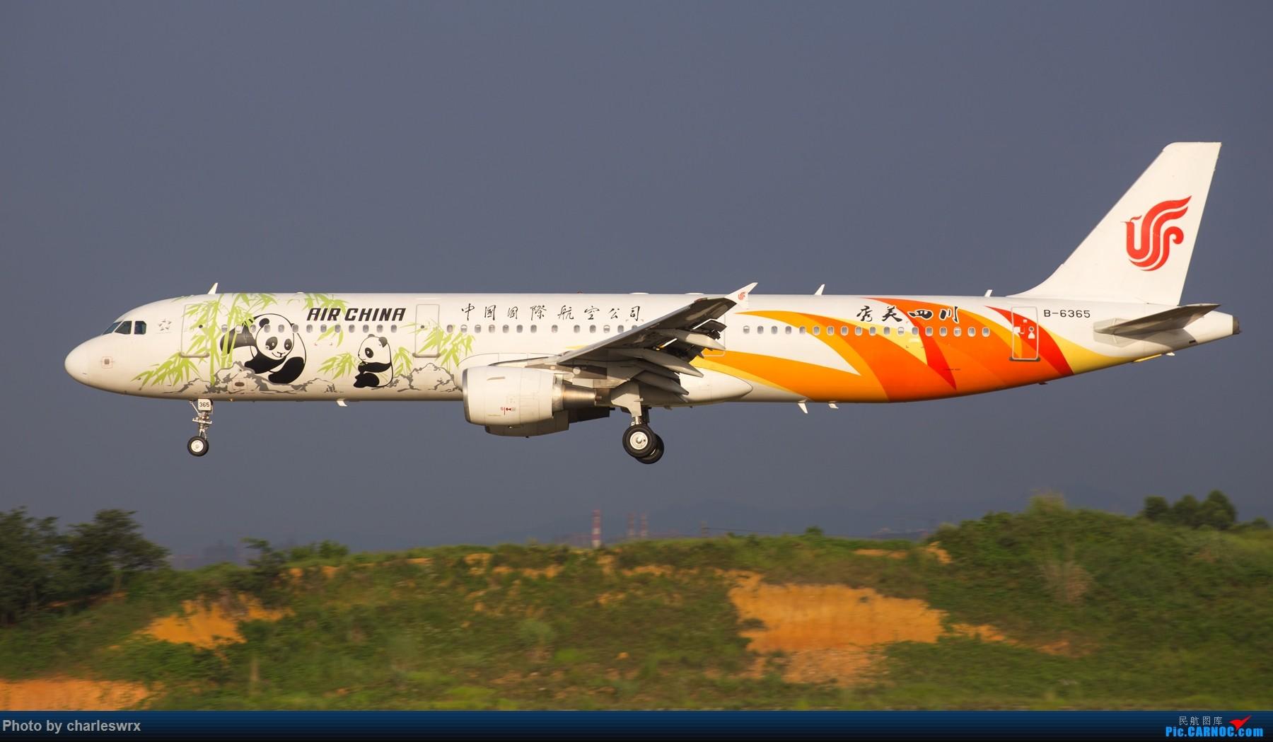 Re:[原创]夕阳余晖下的CTU AIRBUS A321-200 B-6365 中国成都双流国际机场