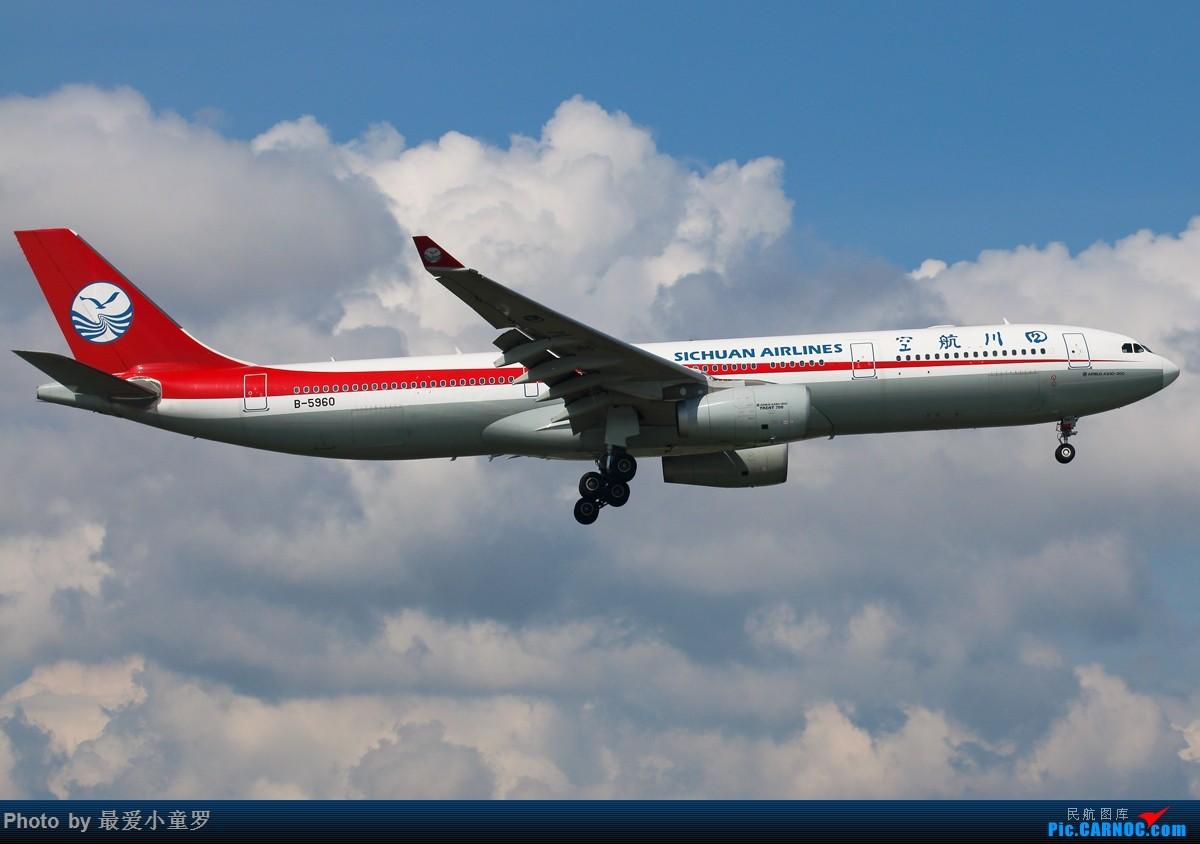 Re:[原创]有一段时间没发图了——深圳机场六月初的天 AIRBUS A330-300 B-5960 中国深圳宝安国际机场