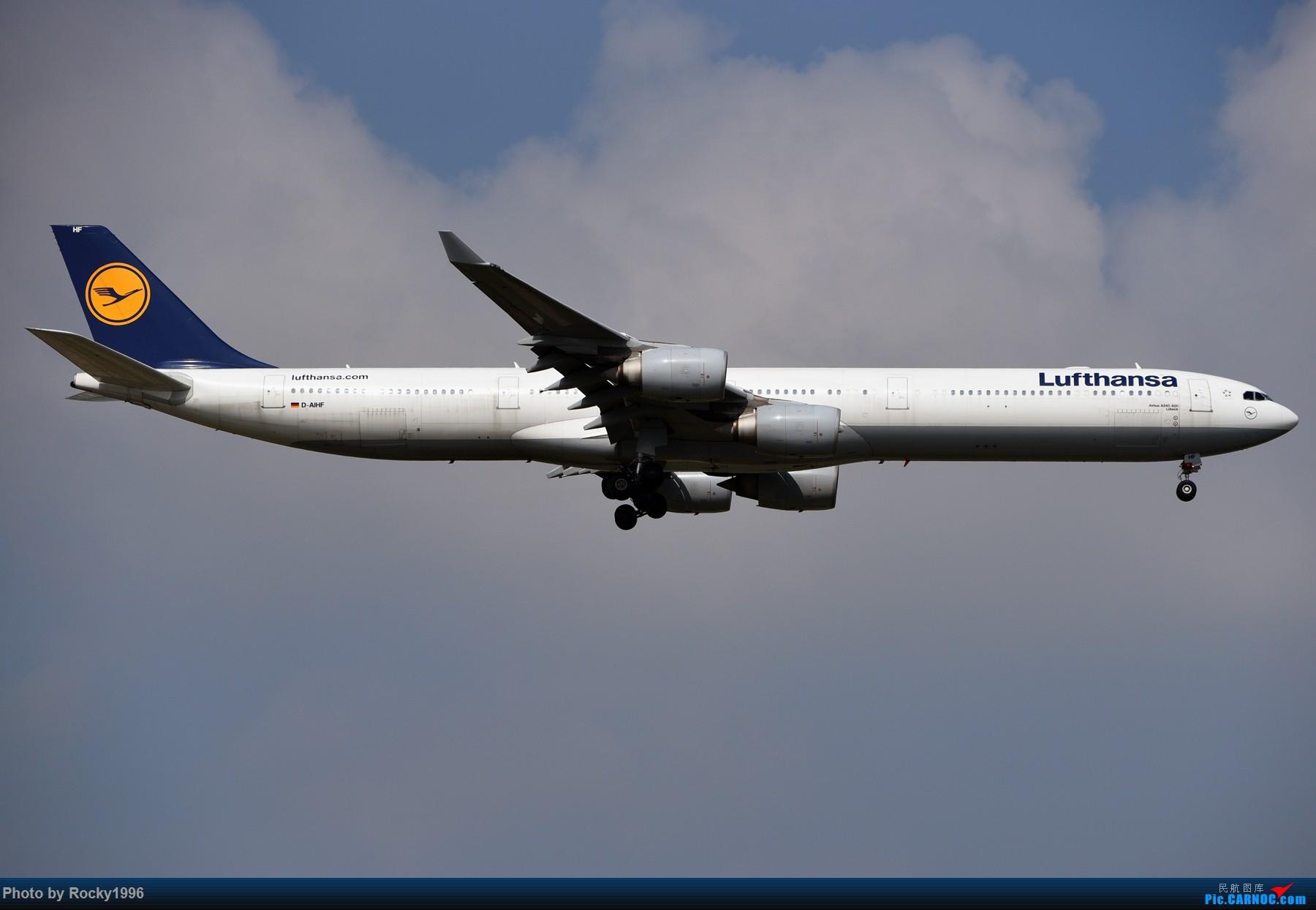 Re:[原创]浦东好天,就要胖子棍子一把抓!! AIRBUS A340-600 D-AIHF 中国上海浦东国际机场