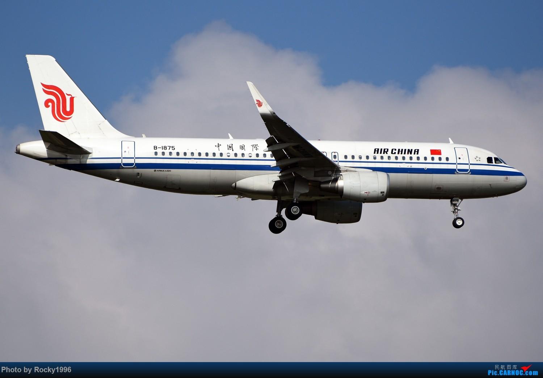 Re:[原创]浦东好天,就要胖子棍子一把抓!! AIRBUS A320-200 B-1875 中国上海浦东国际机场