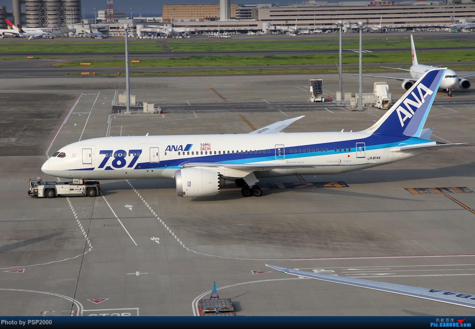 Re:羽田空港展望 BOEING 787-8 JA814A