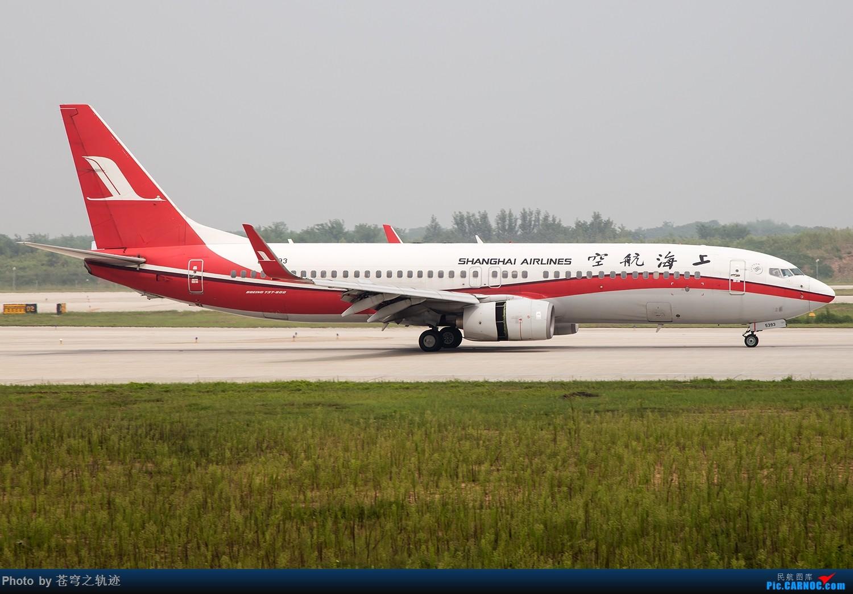 Re:[原创]这个天在NKG拍机还是热爆了 热晕交作业 BOEING 737-800 B-5393 中国南京禄口国际机场