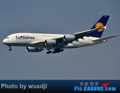 Re:[原创]上海浦东拍机 好货多多 AIRBUS A380-800 D-AIMI 中国上海浦东国际机场