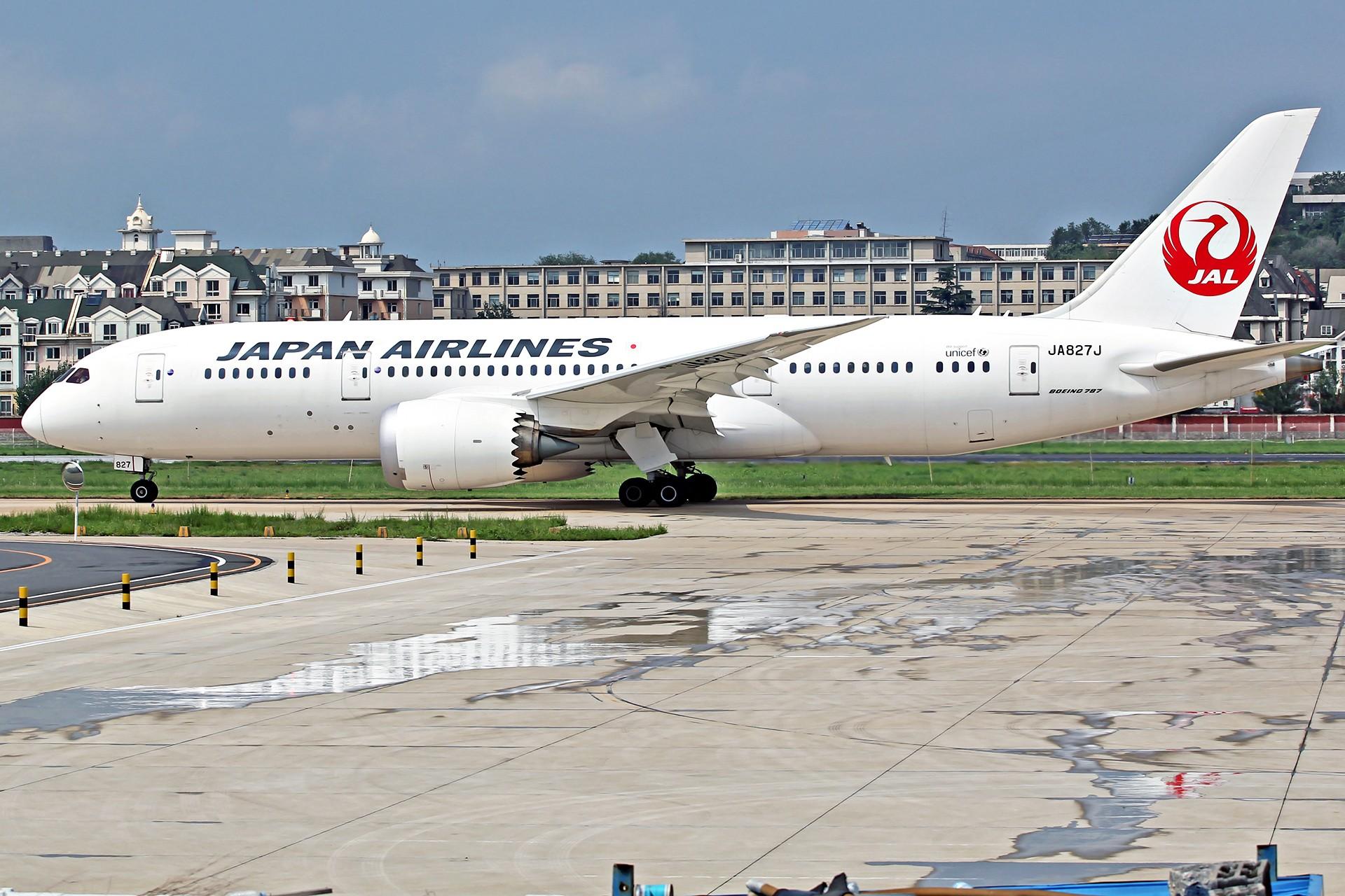 [原创][DLC]。。。皇军与美女。。。 BOEING 787-8 JA827J 中国大连国际机场
