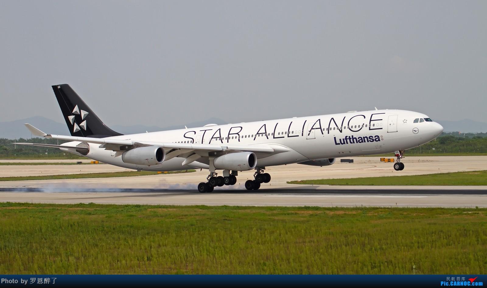 [原创]NKG~~ARJ我就不发了,来点NKG日常 AIRBUS A340-300 D-AIGX 中国南京禄口国际机场