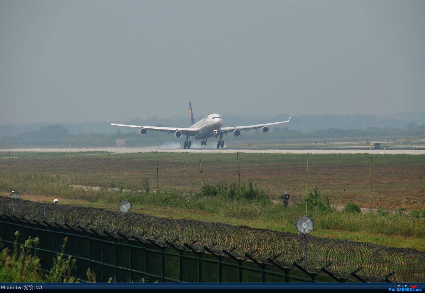 Re:[原创]【NKG】新手第二发 1800*1200!各种好货 AIRBUS A340-300 D-AIGL 中国南京禄口国际机场