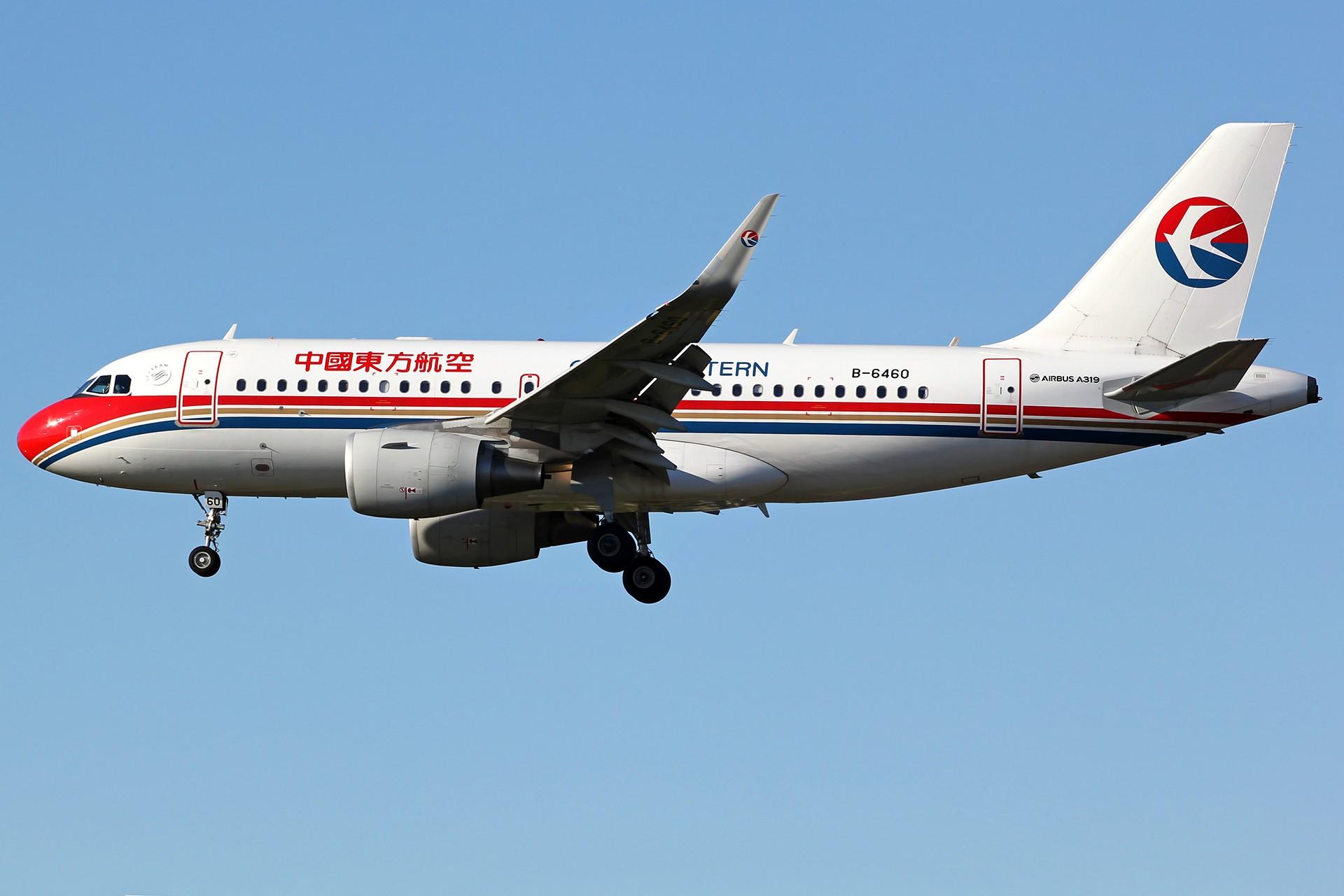 Re:[原创][DLC]。。。降落一组。。。 AIRBUS A319-100 B-6460 中国大连国际机场