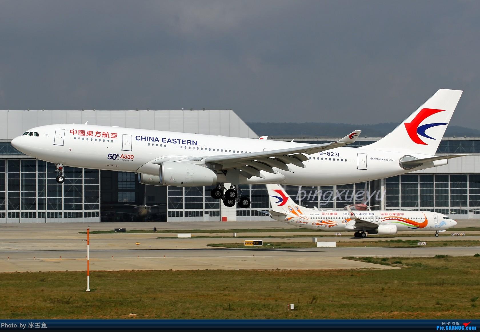 """[原创]【BLDDQ-昆明飞友会】东航第50架A330、""""英航云南""""等——这个季节光线不理想! AIRBUS A330-200 B-8231 中国昆明长水国际机场"""