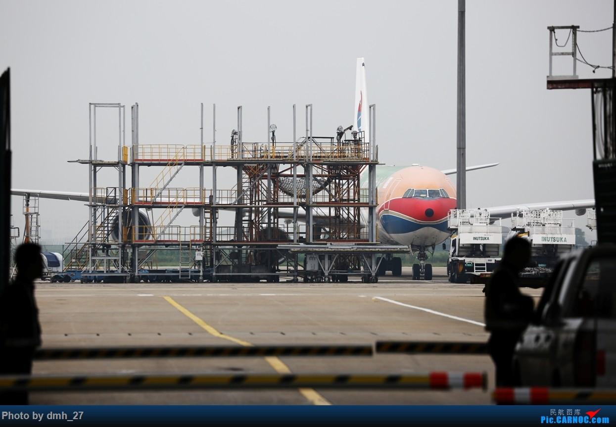 托好友的福第一次拜了PVG的码头 可惜主角6055犹抱琵琶半遮面 AIRBUS A340-600 B-6055 中国上海浦东国际机场