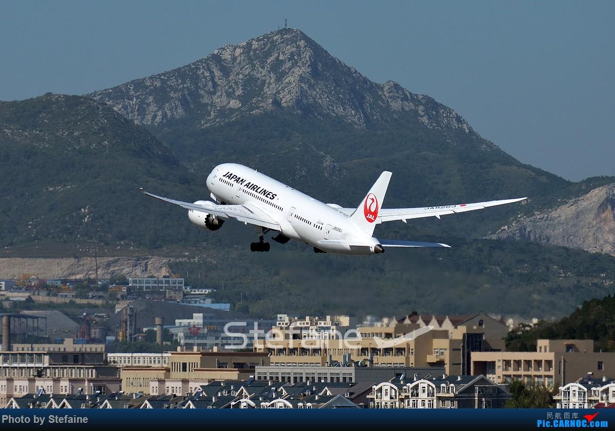 Re:[原创][DLC]岛国宽体包场 BOEING 787-8 JA826J 中国大连国际机场