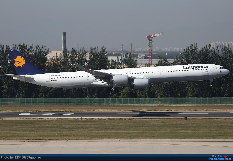 Re:[原创]PEK格林豪泰首发,乱七八糟一堆。 AIRBUS A340-600 D-AIHQ 北京首都机场