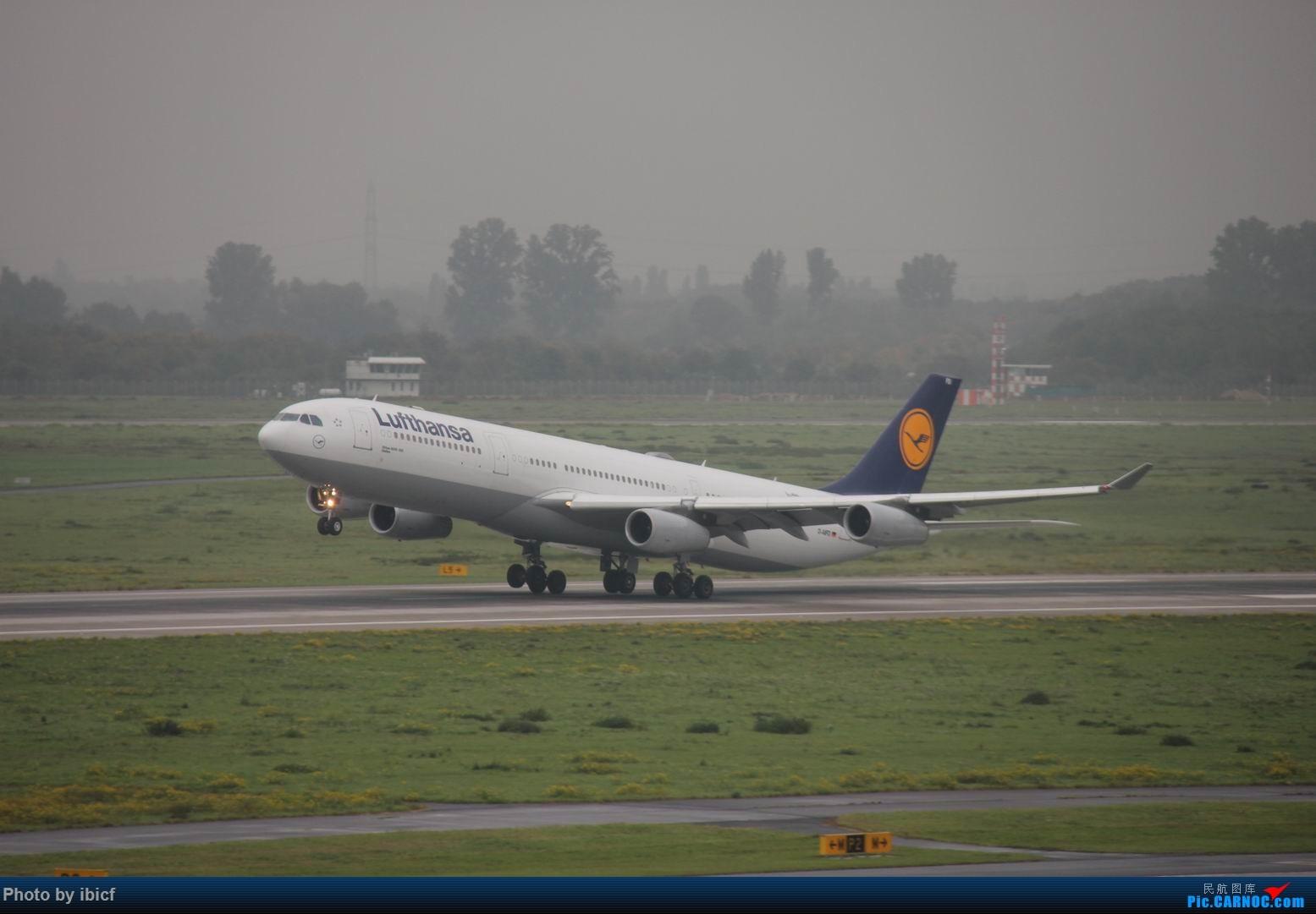 Re:国庆杜塞拍机 AIRBUS A340-300 D-AIFD DUS