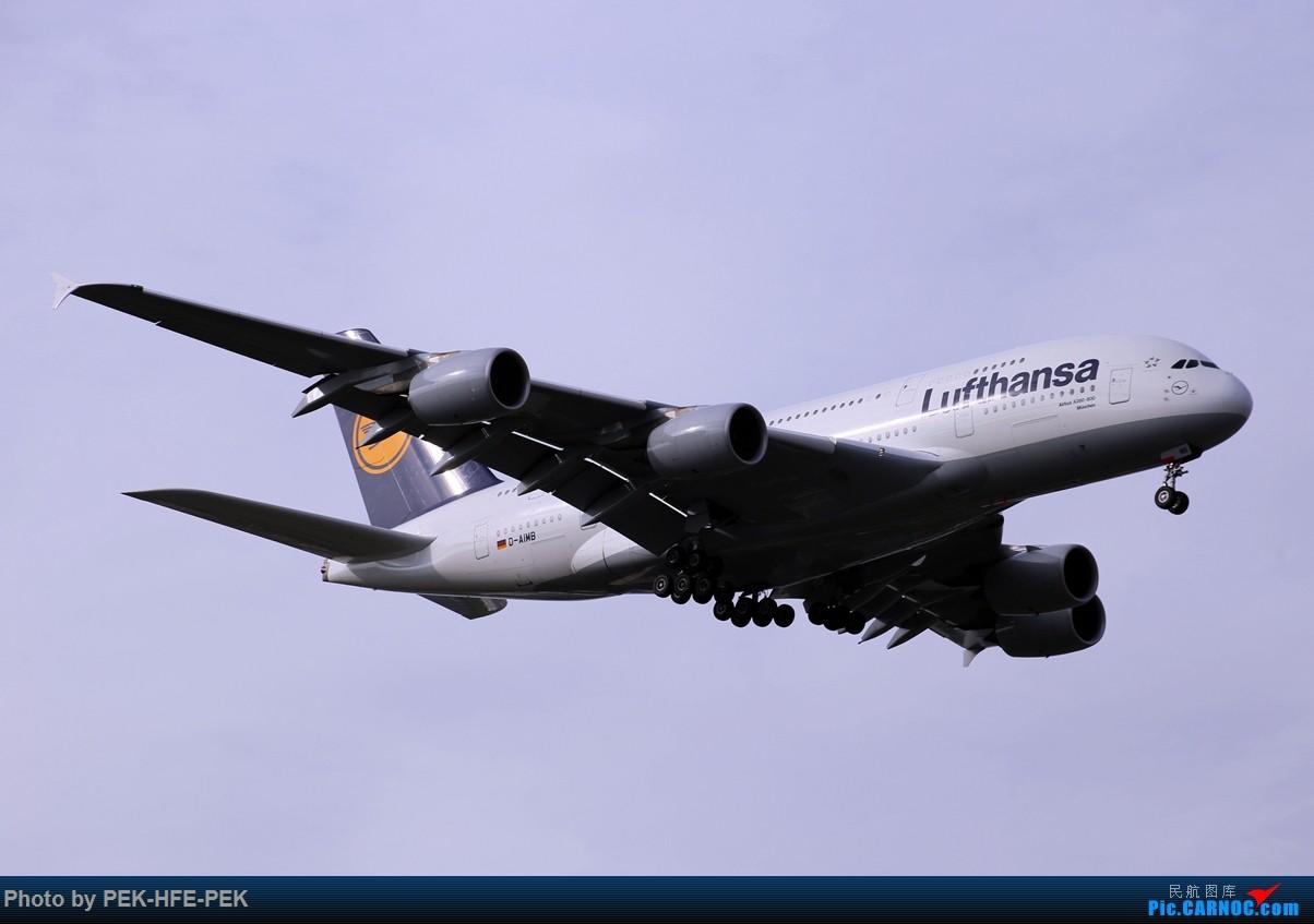 Re:[原创][AutumnKwok]很久没发图了,昨天在PEK垃圾站一组,好天气。 AIRBUS A380-800 D-AIMB