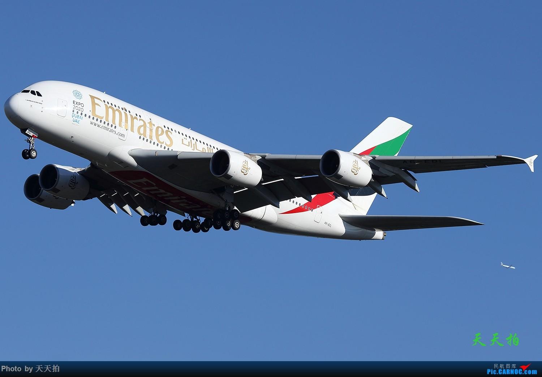 [原创]北京首都国际机场拍机的地方很多飞友们一定要珍惜 AIRBUS A380 A6-EDL 中国北京首都国际机场