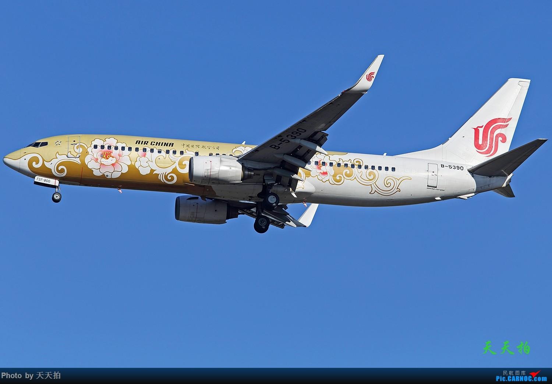 Re:[原创]北京首都国际机场拍机的地方很多飞友们一定要珍惜 BOEING 737-800 B-5390 中国北京首都国际机场