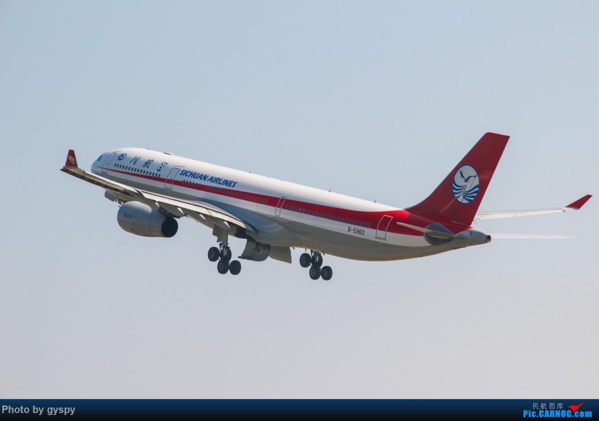 Re:[原创]新人早起白云西跑拍机!抓到汉莎MD11! AIRBUS A330-300 B-5960 中国广州白云国际机场