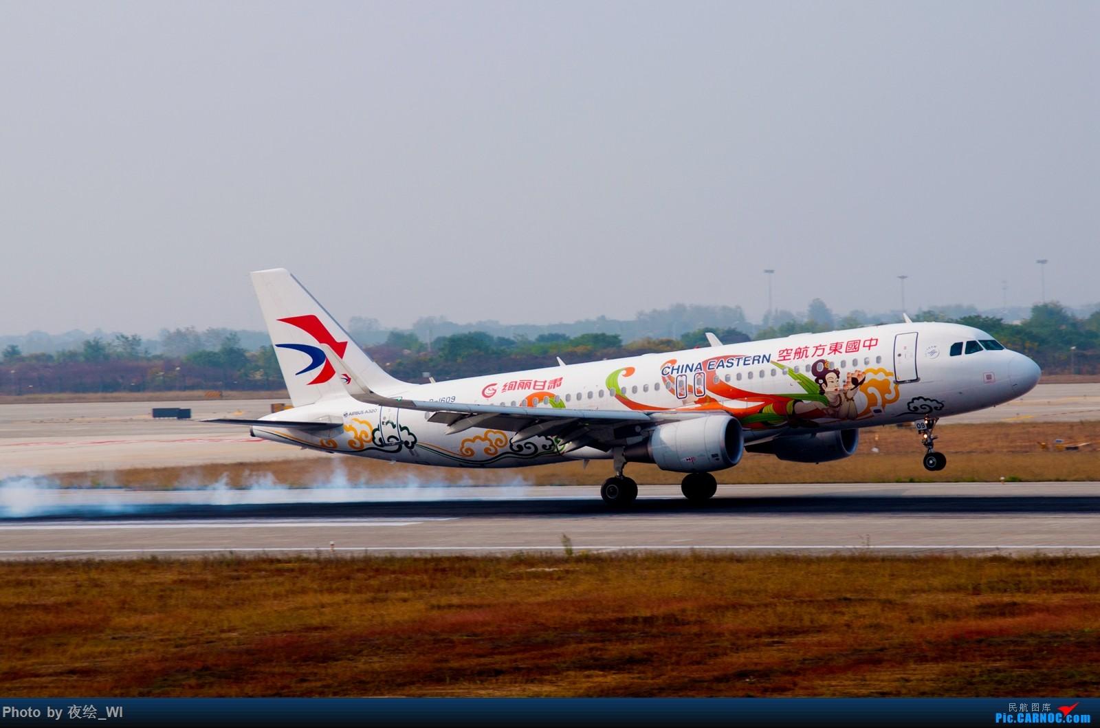 Re:[原创]【NKG】生日第二天就去拍机,日常练手+练后期,今天是胶片味 AIRBUS A320-200 B-1609 中国南京禄口国际机场
