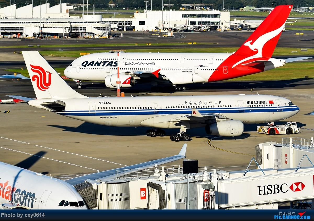 Re:[原创]【多图】半年来SYD拍机 AIRBUS A330-200 B-6541 澳大利亚悉尼金斯福德·史密斯机场