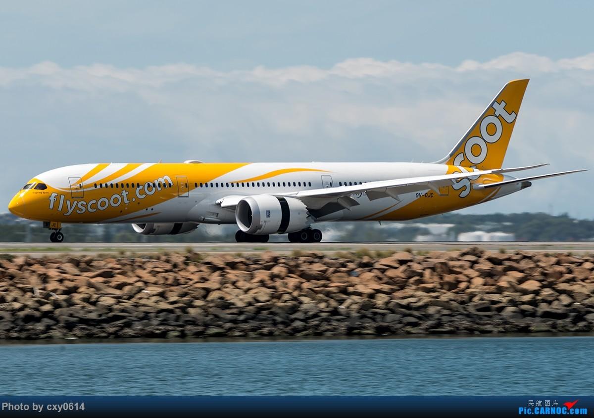 Re:[原创]【多图】半年来SYD拍机 BOEING 787-9 9V-OJC 澳大利亚悉尼金斯福德·史密斯机场