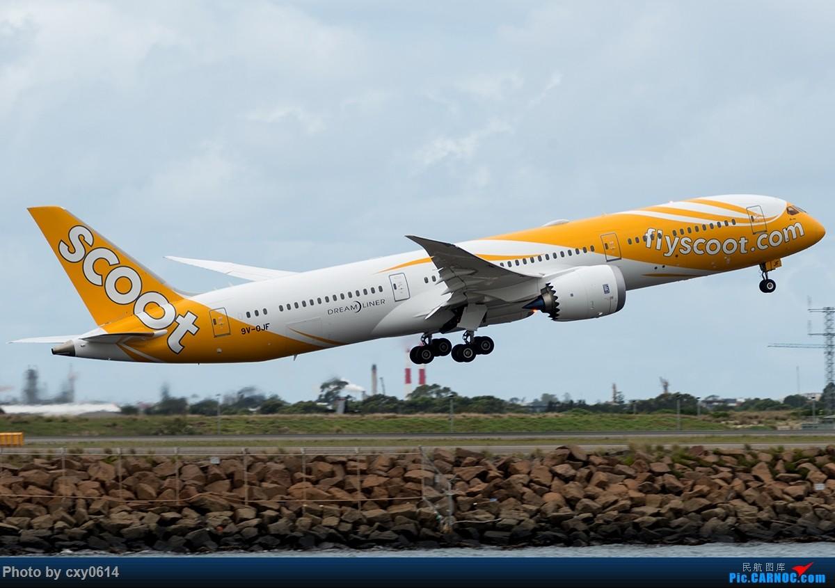 Re:[原创]【多图】半年来SYD拍机 BOEING 787-9 9V-OJF 澳大利亚悉尼金斯福德·史密斯机场
