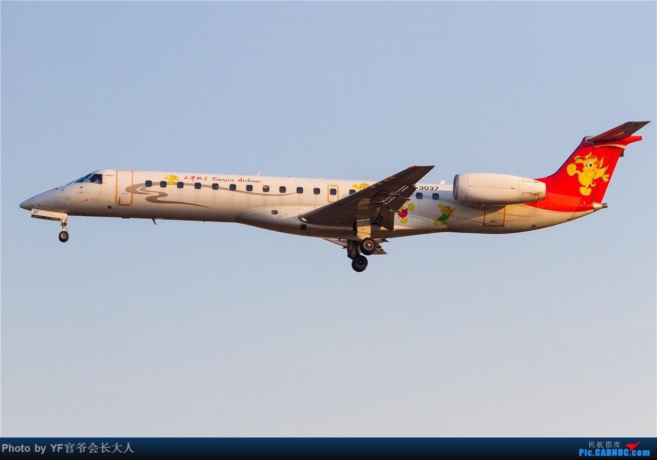 Re:[原创]【ZYTX】北风吹来了蓝天,白云和阳光,还有女王和爱妃,高富帅和蓝领,还有无产阶级以及广大普通群众 EMBRAER ERJ-145 B-3037 中国沈阳桃仙国际机场
