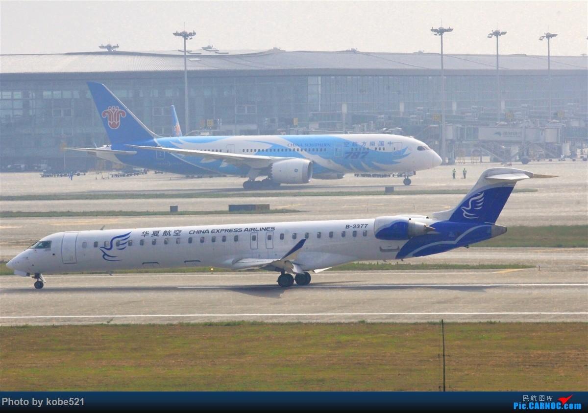 Re:[原创]雾霾季的小灰灰 BOMBARDIER CRJ900NG B-3377 中国杭州萧山国际机场