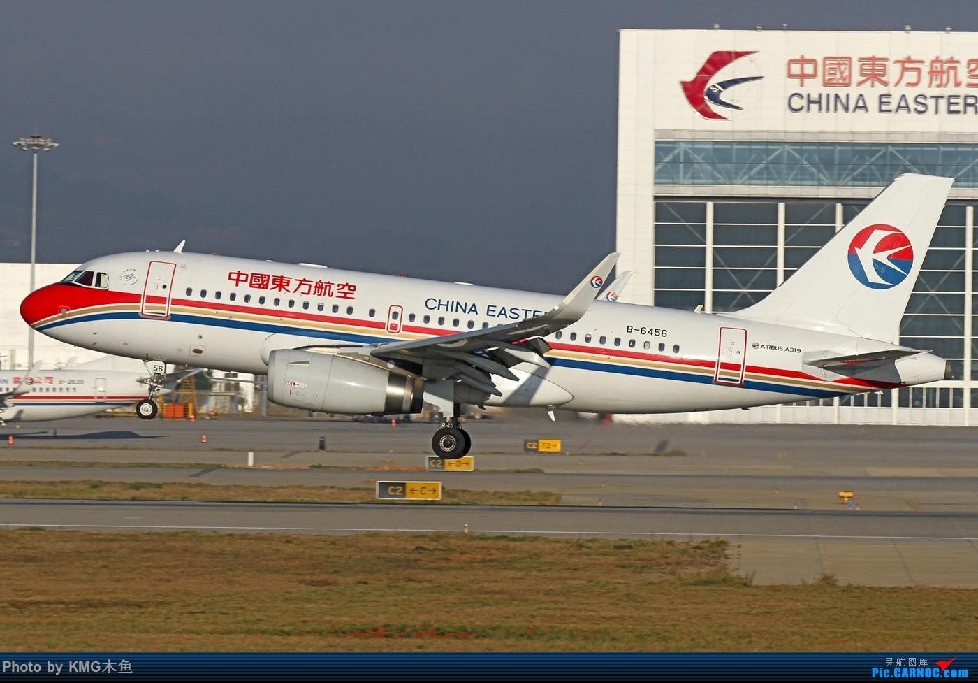 Re:[原创]【KMG昆明长水国际机场】好天气,拍到了好灰机,愉快的一天 AIRBUS A319-100 B-6456 中国昆明长水国际机场