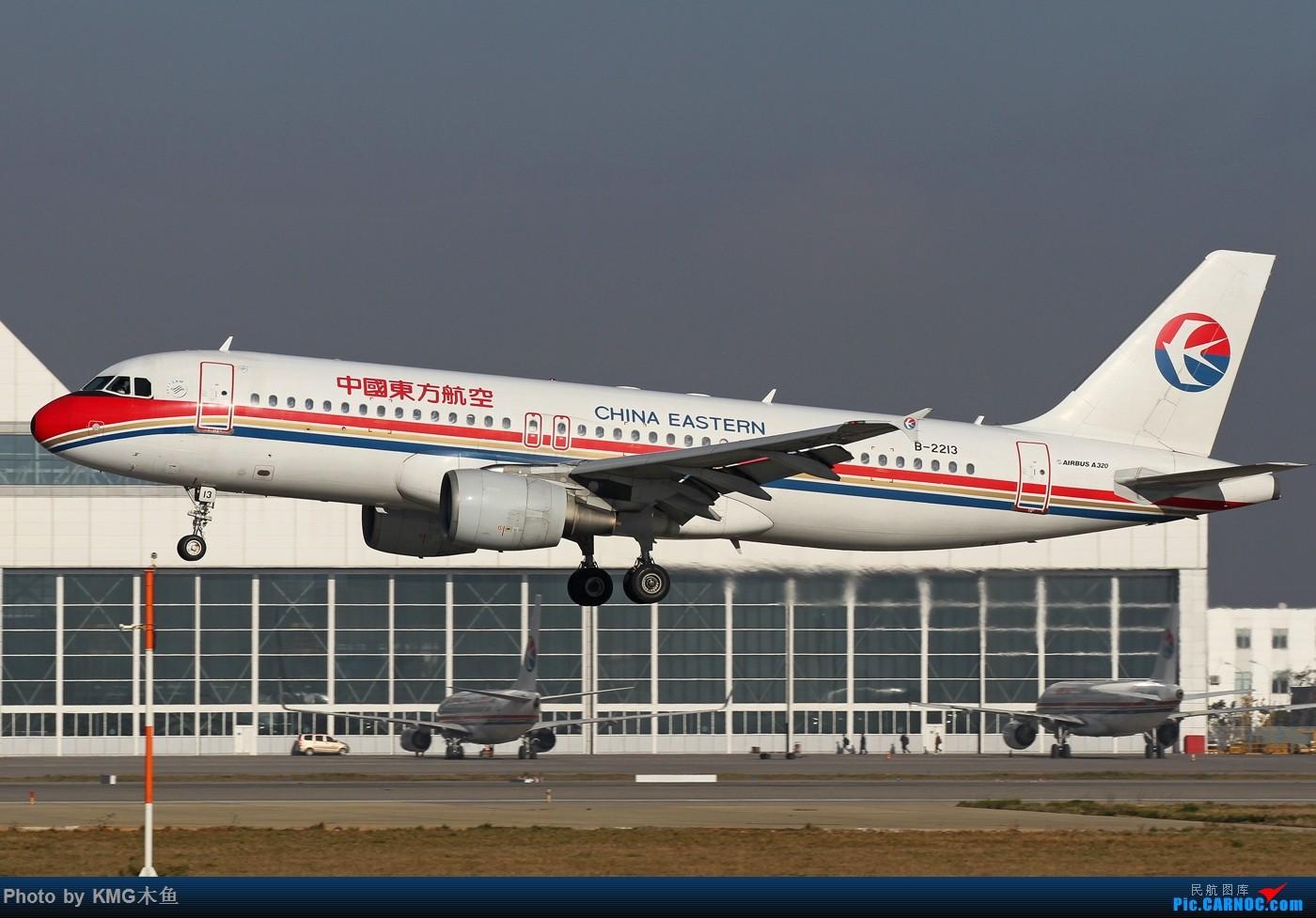 Re:[原创]【KMG昆明长水国际机场】好天气,拍到了好灰机,愉快的一天 AIRBUS A320-200 B-2213 中国昆明长水国际机场