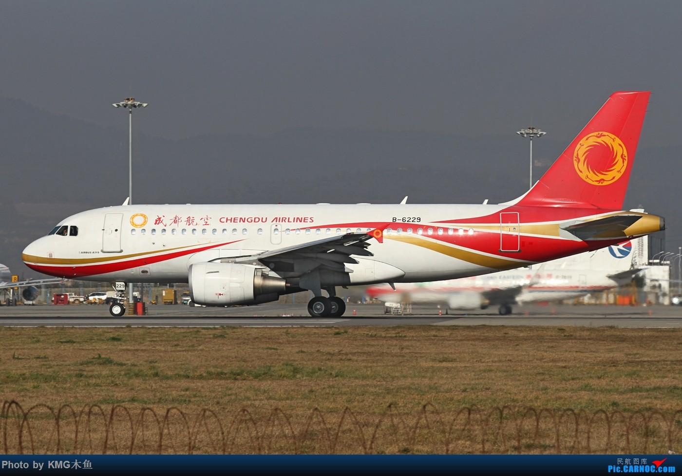 Re:[原创]【KMG昆明长水国际机场】好天气,拍到了好灰机,愉快的一天 AIRBUS A319-100 B-6229 中国昆明长水国际机场