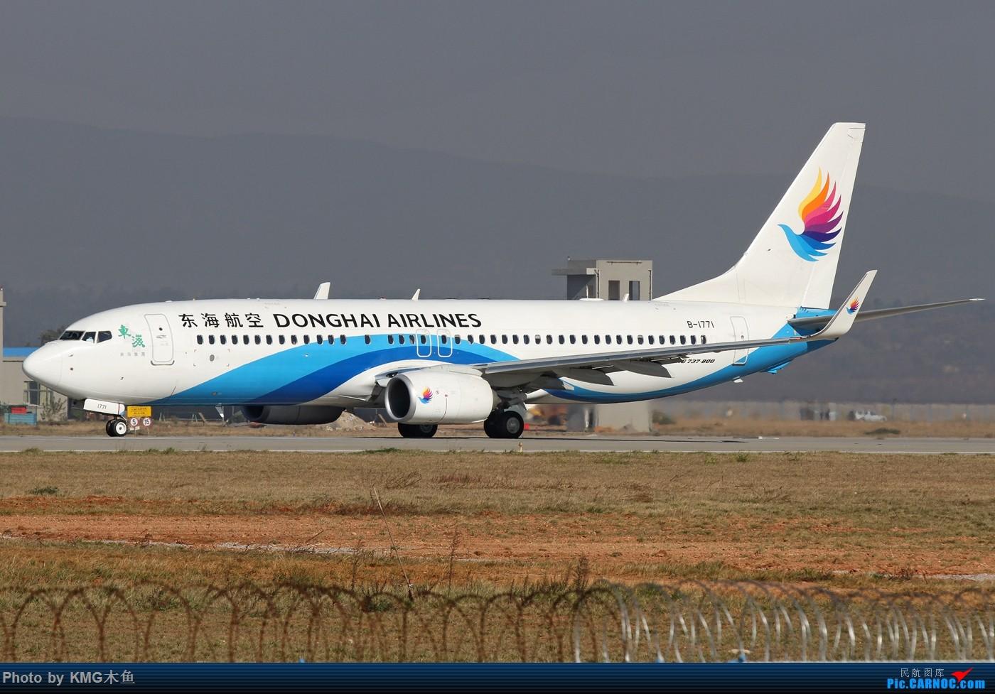Re:[原创]【KMG昆明长水国际机场】好天气,拍到了好灰机,愉快的一天 BOEING 737-800 B-1771 中国昆明长水国际机场