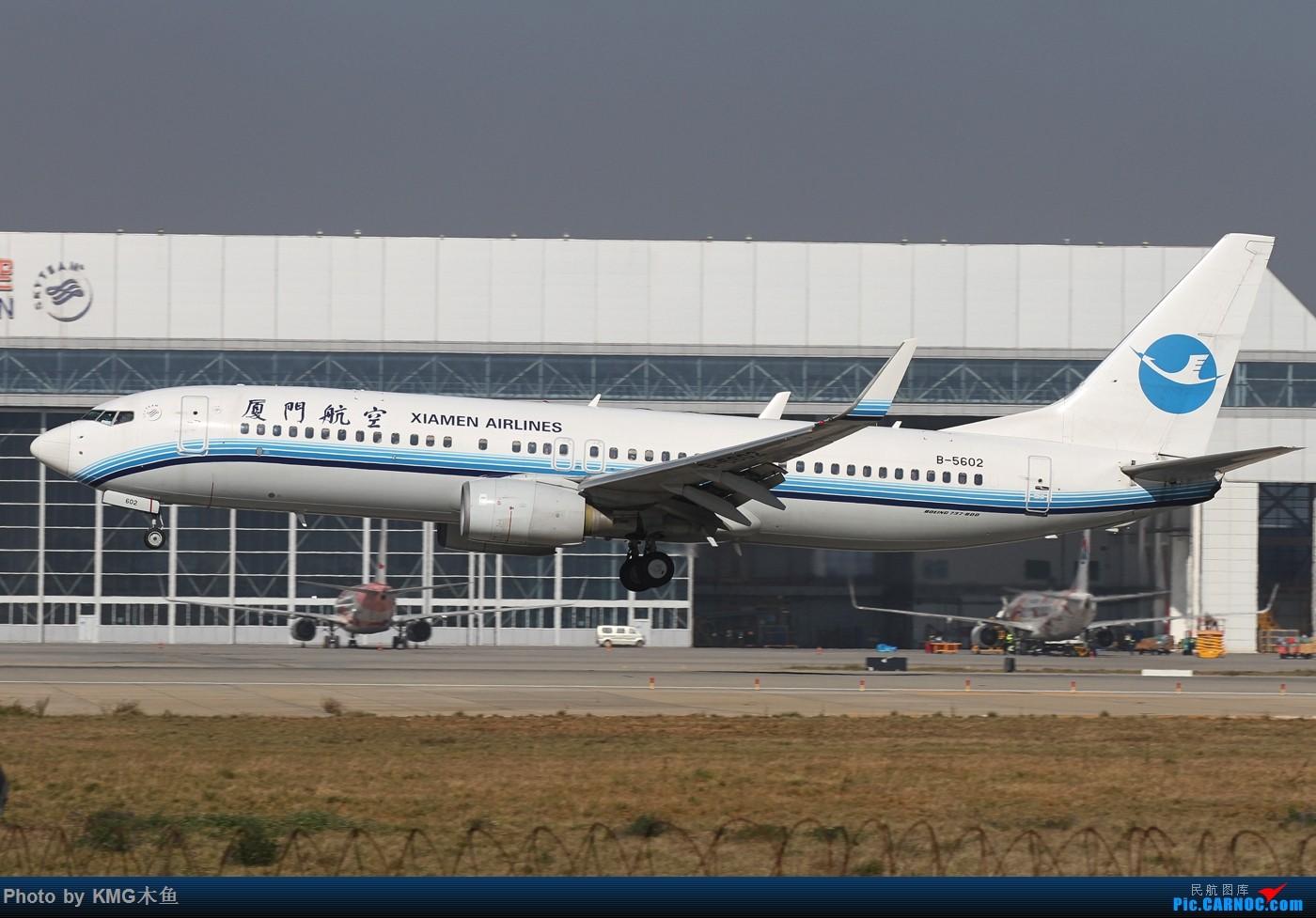 Re:[原创]【KMG昆明长水国际机场】好天气,拍到了好灰机,愉快的一天 BOEING 737-800 B-5602 中国昆明长水国际机场
