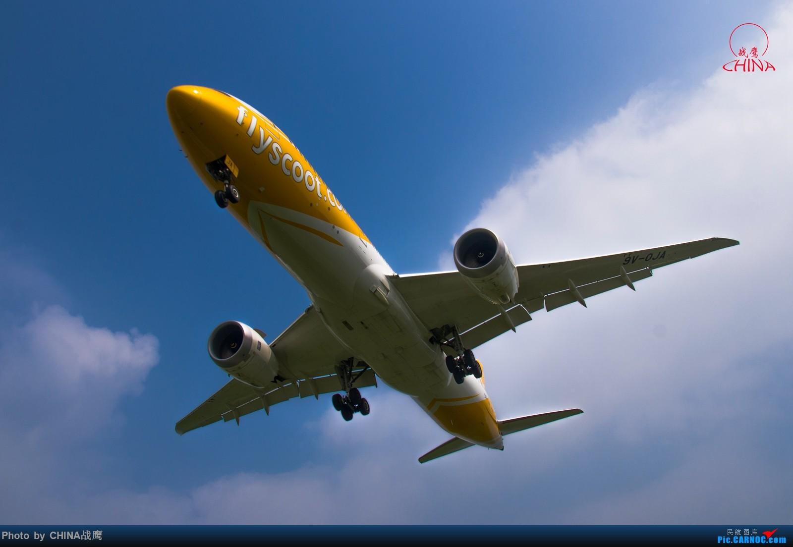[原创]【SHE】第三季度桃仙拍飞机集锦 BOEING 787-9 9V-OJA 中国沈阳桃仙国际机场