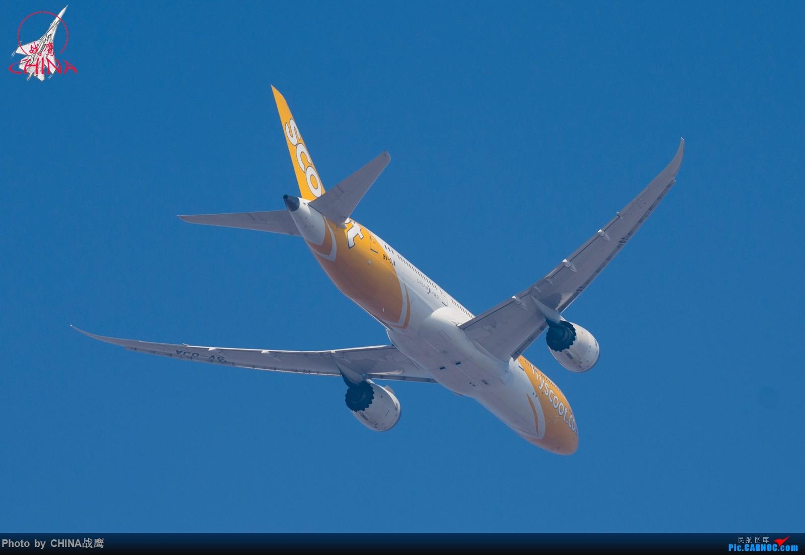 Re:[原创]【SHE】第三季度桃仙拍飞机集锦 BOEING 787-9 9V-OJA 中国沈阳桃仙国际机场
