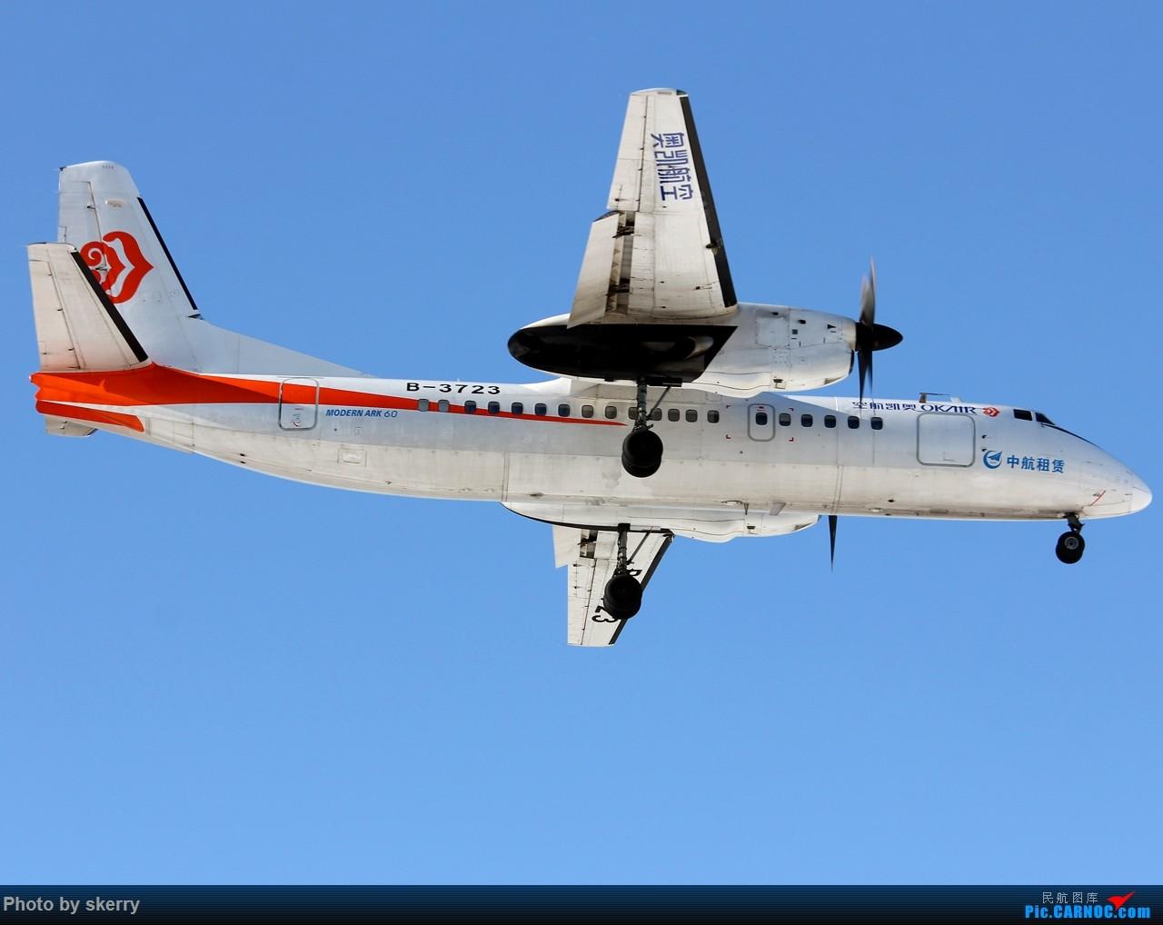 Re:[原创]【TSN飞友会】TSN雪后唯一一天好天气! XIAN AIRCRAFT MA 60 B-3723 中国天津滨海国际机场
