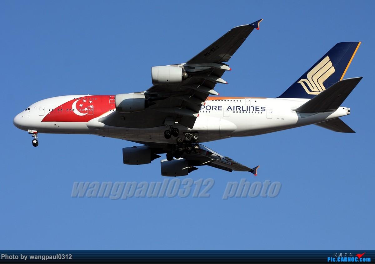 [原创]俩个胖纸的故事--------合肥! AIRBUS A380-841 9V-SKJ 北京首都国际机场