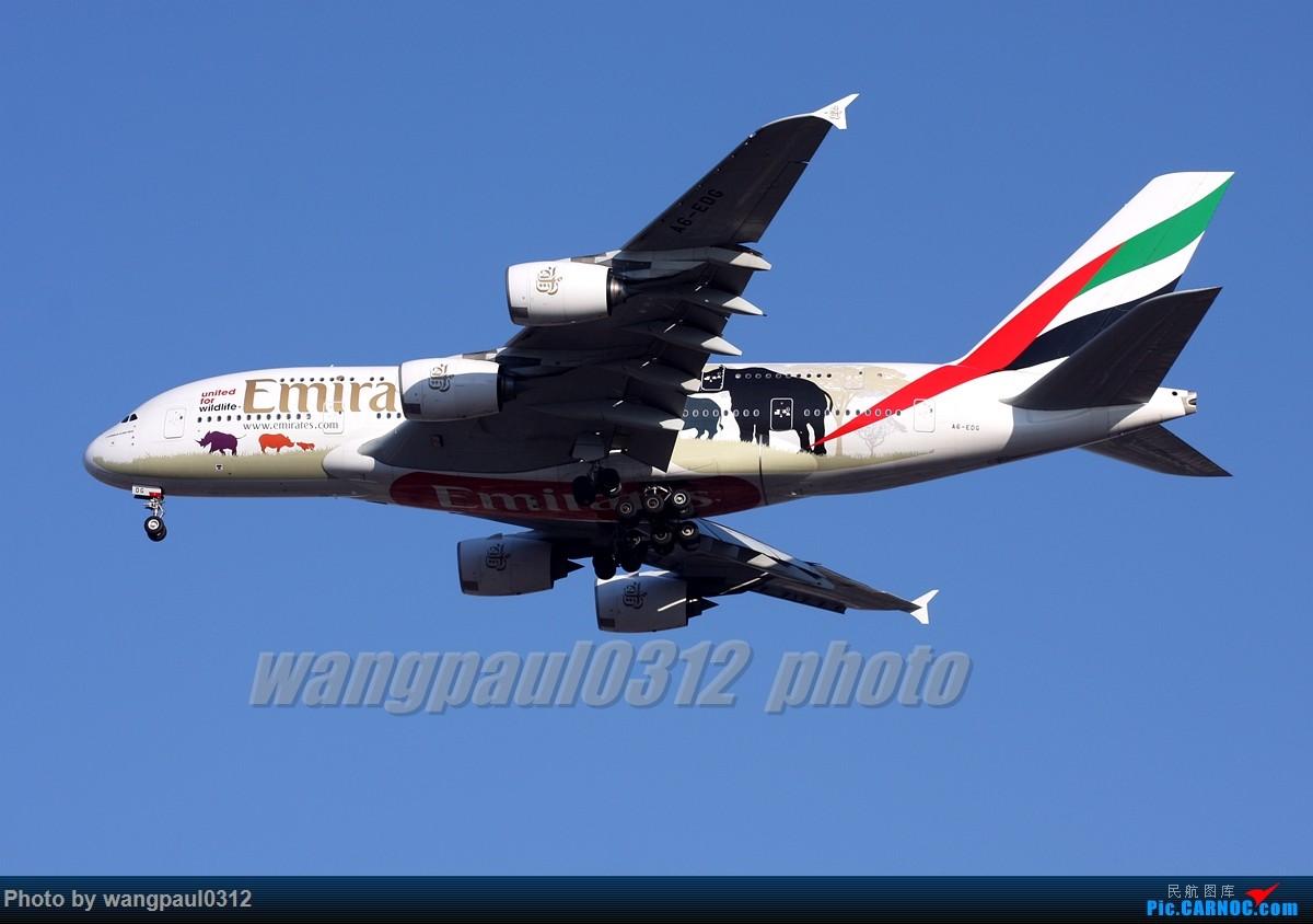 Re:[原创]俩个胖纸的故事--------合肥! AIRBUS A380-861 A6-EDG 北京首都国际机场