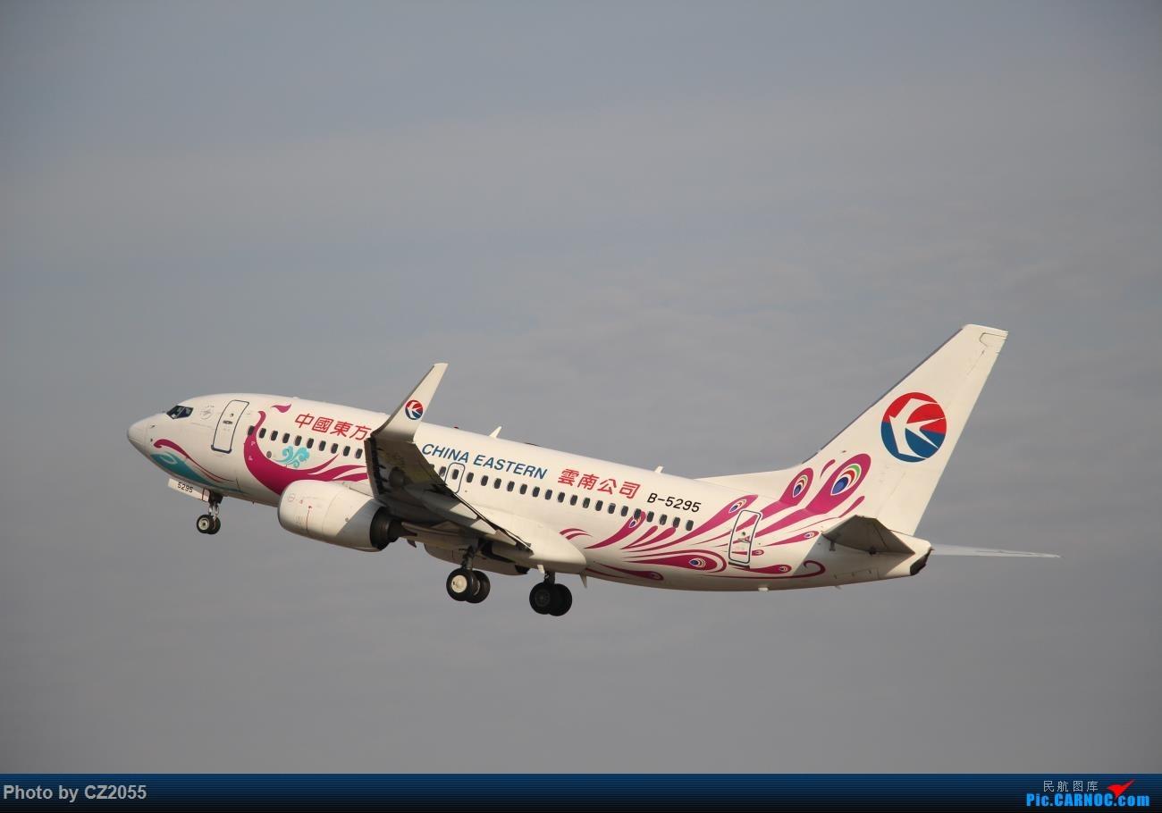 Re:[原创]Re:[原创]【广东青少年拍机小队】【C-Z-2055】2016第一拍,元旦快乐! BOEING 737-700 B-5295 中国广州白云国际机场