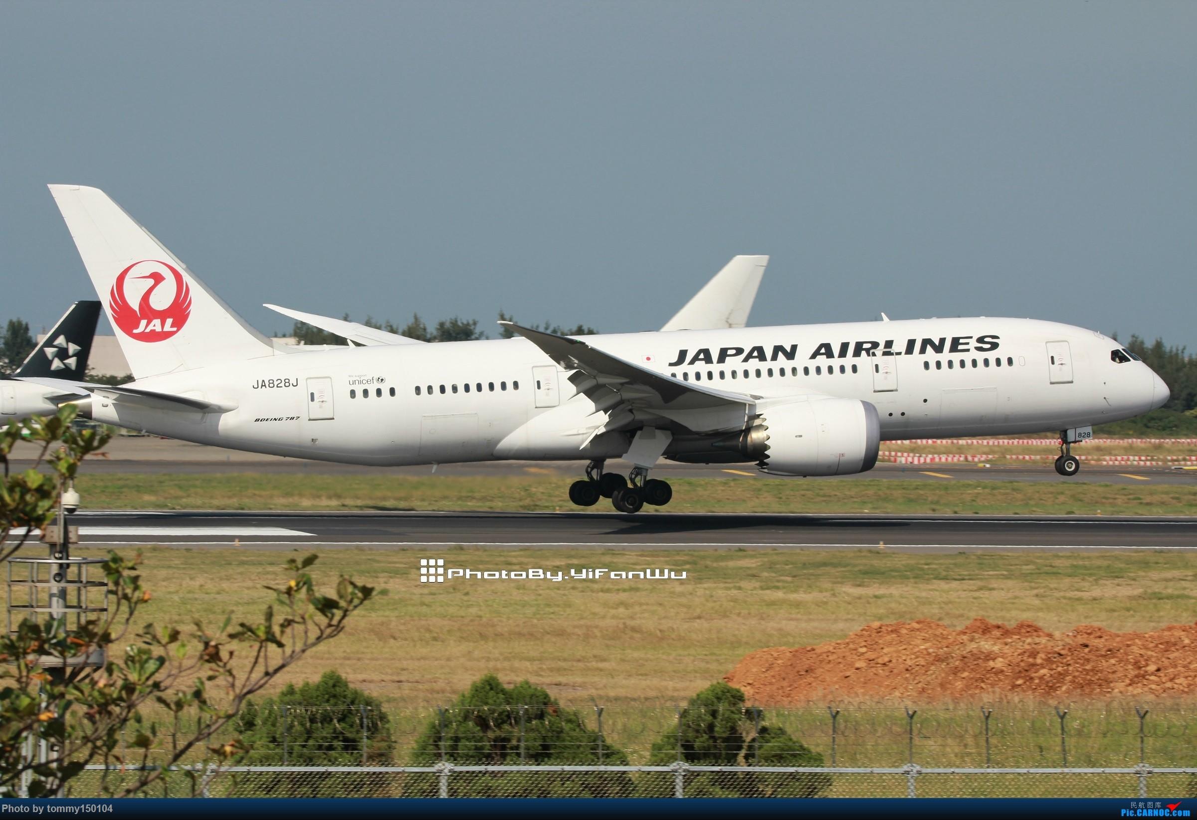 Re:[原创]新手試貼 TPE台北桃園 BOEING 787-8 JA828J 中国台北桃园国际机场