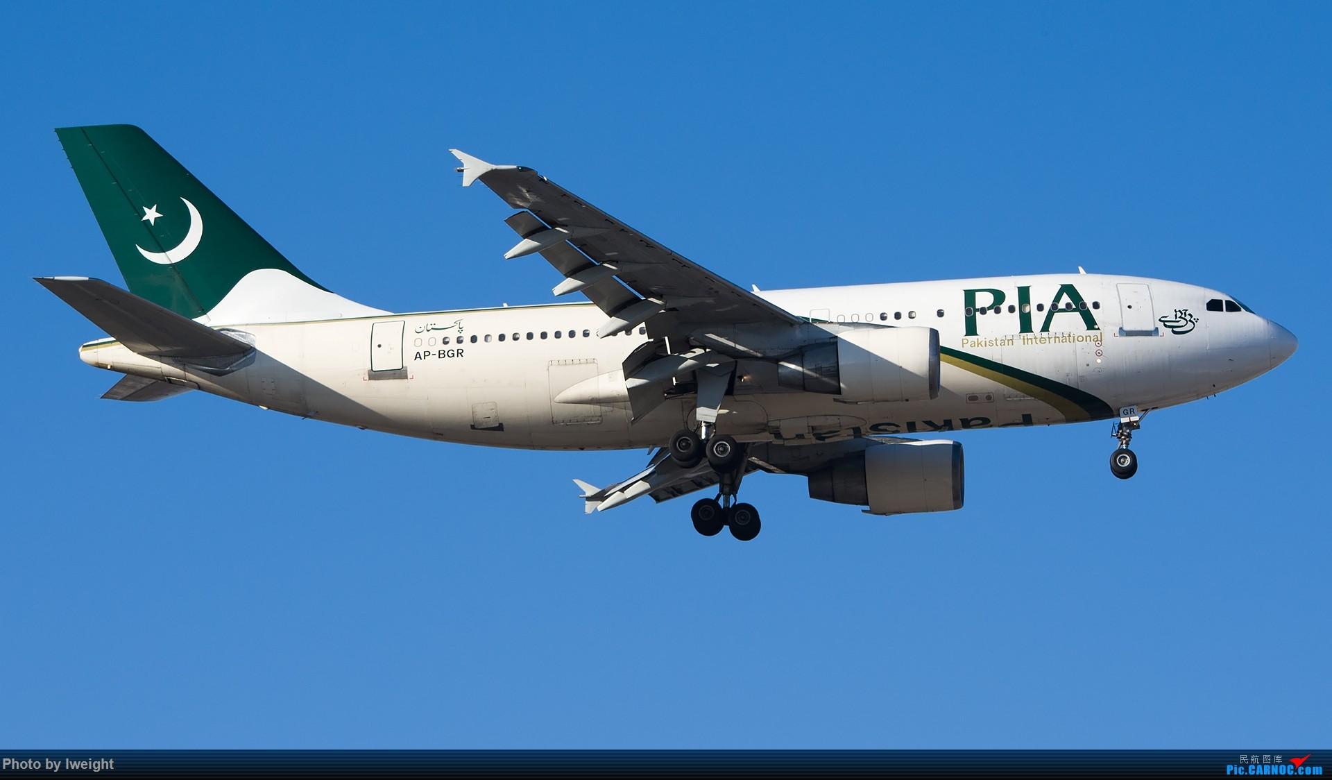 Re:[原创]又见蓝月亮 AIRBUS A310 AP-BGR 中国北京首都国际机场