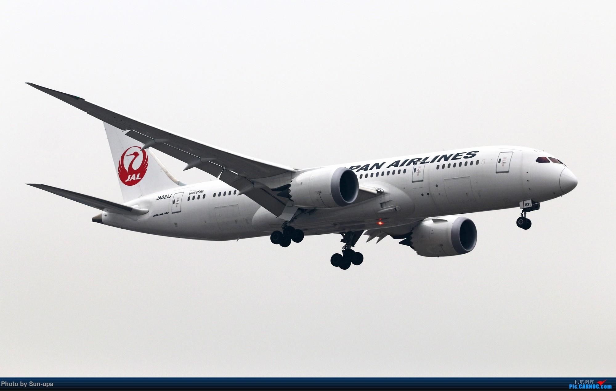 Re:[原创]【Sun-upa】2016新年第一拍 PEK好货不少 BOEING 787-8 JA831J 中国北京首都国际机场