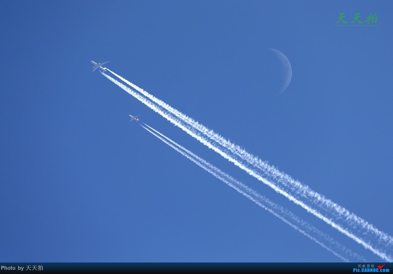 Re:[原创]成都新飞友网名枫菜同学欢迎你加入民航资源网拍机行列愿你越飞越高